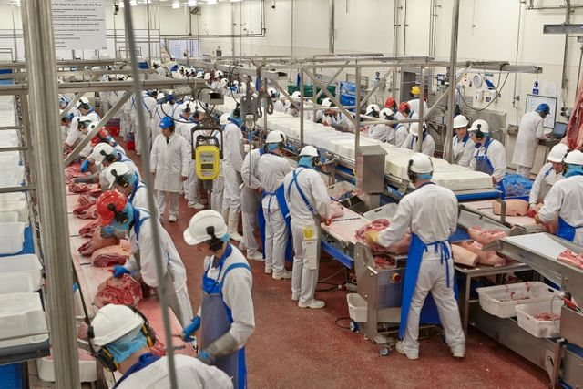 New approach to immigration controls needed in face of food sector labour shortages featured image