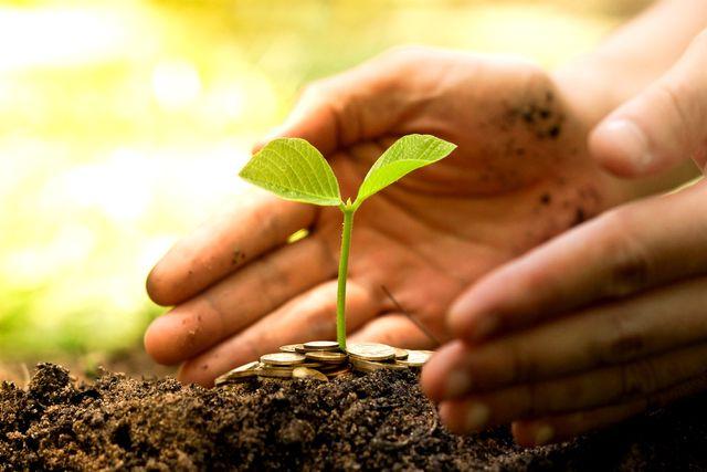 Social value and public procurement featured image