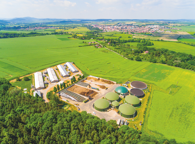 Biomass and AD developments and consultations featured image