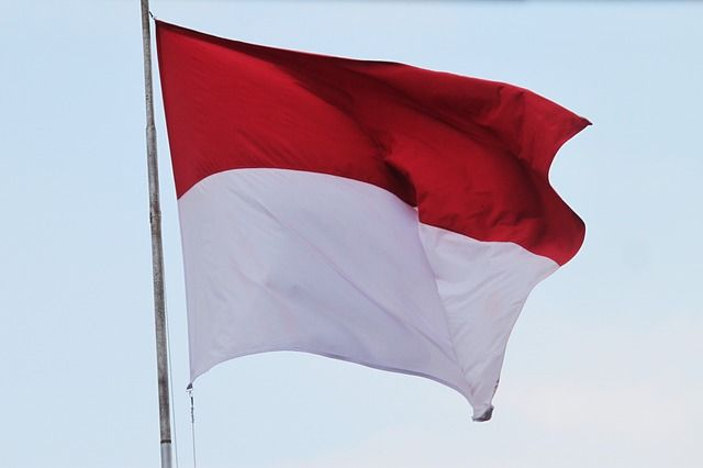 Think 'positive' – Indonesia liberalises foreign investment in key industry sectors featured image