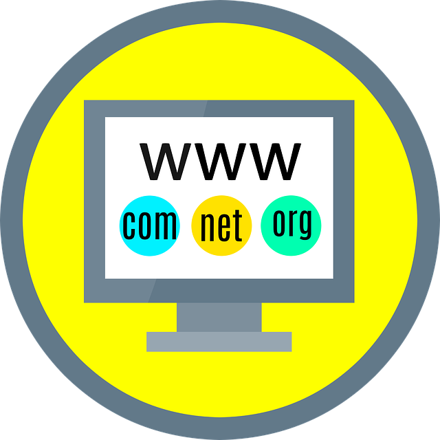 Judge raises the stakes: domain names are intangible property featured image