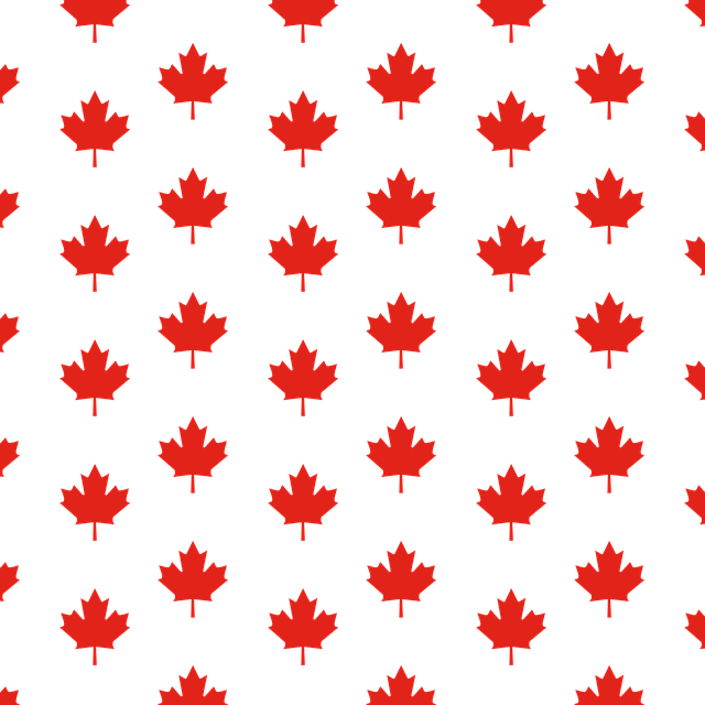 Canadian Privacy Commissioner Launches AI Consultation featured image