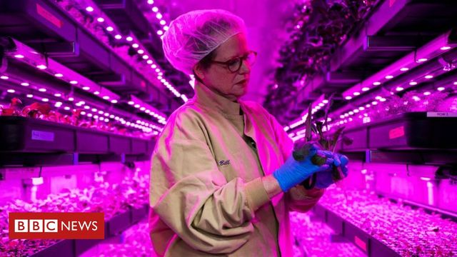 Indoor farms, AI, robotics, drones - what technology will disrupt agriculture next? featured image