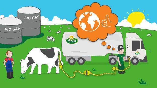 Biogas poweredmilk trucks featured image
