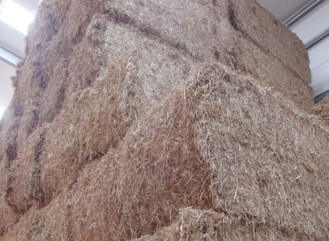 Straw producers encouraged to use the Sustainable Fuel Register (SFR) featured image