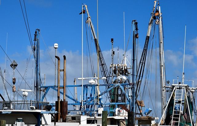 £15.4 million Maritime Fisheries Fund open for English applications from today featured image