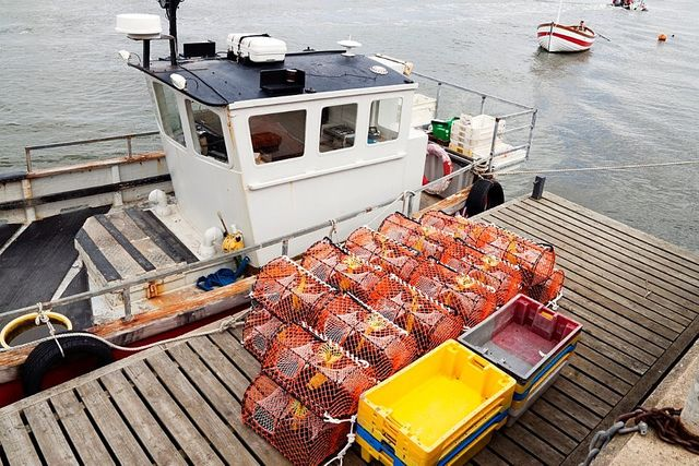 Fishing Vessel Licence Applications during Lockdown Period featured image