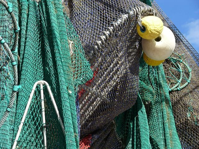 New EU Exit guidance for commercial fishers, merchants and exporters featured image