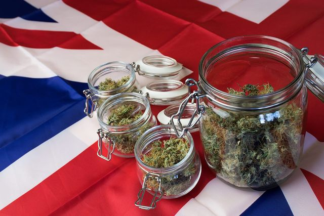 Will decriminalization boost cannabis VC investment in the UK? featured image