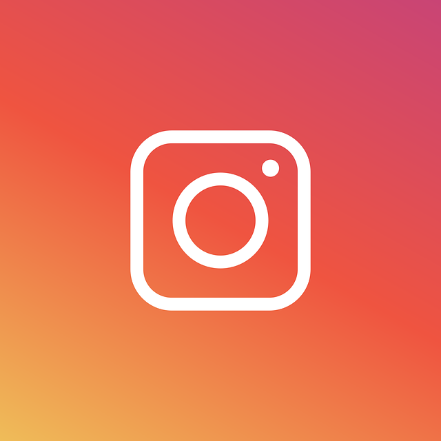 Two SDNY Courts Post Opposite Conclusions on Instagram Fair Use featured image