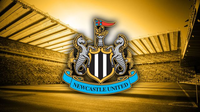 Could the Newcastle United takeover beIN doubt? featured image