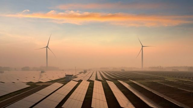 Renewable energy holds up during historic shock featured image