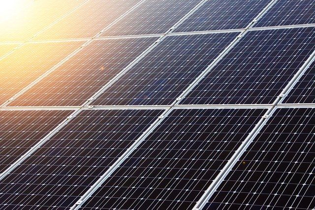 Net Zero Carbon Pathways featured image