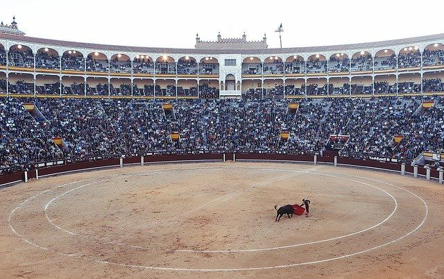 Bullfighting ... as a copyright work? featured image