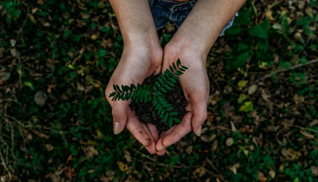 Change in Law Departments: A Sustainability-Inspired Approach (Part 2) – Managing Unsustainable Change featured image