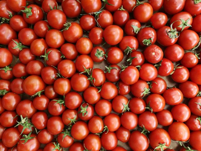 Growing cherry tomatoes remotely featured image