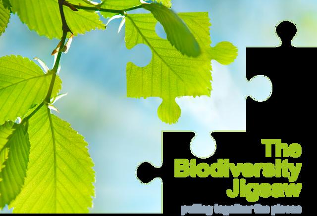Webinar: The Biodiversity Jigsaw featured image