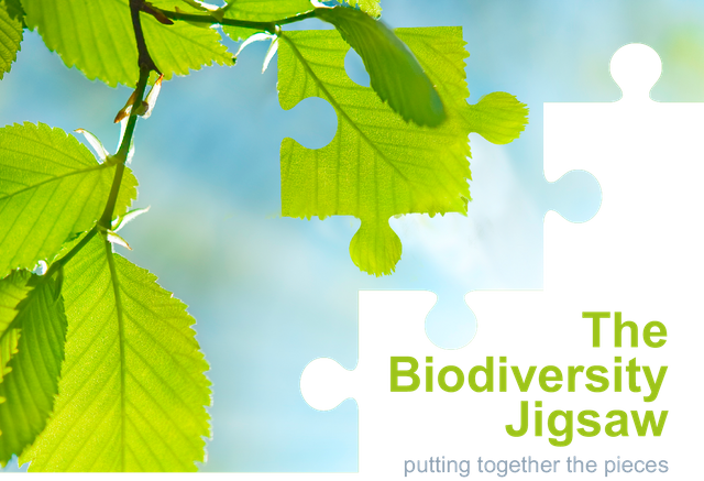 Our speakers: The Biodiversity Jigsaw featured image