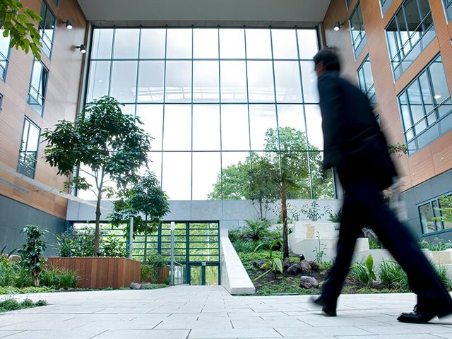 Net Zero - Sustainable offices, do they deliver higher rents? featured image