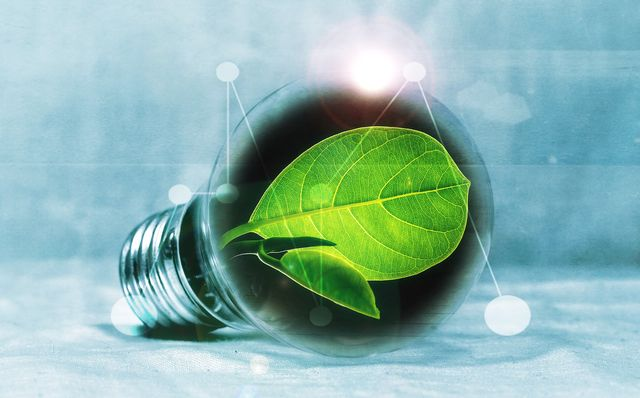 A European Green Deal – Digitalisation as a driver of change featured image