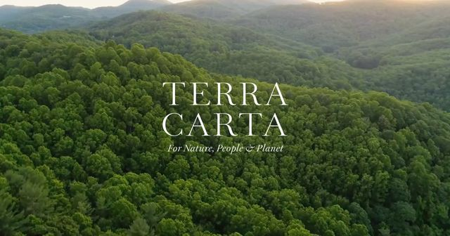 Terra Carta: ESG receives a knighthood featured image