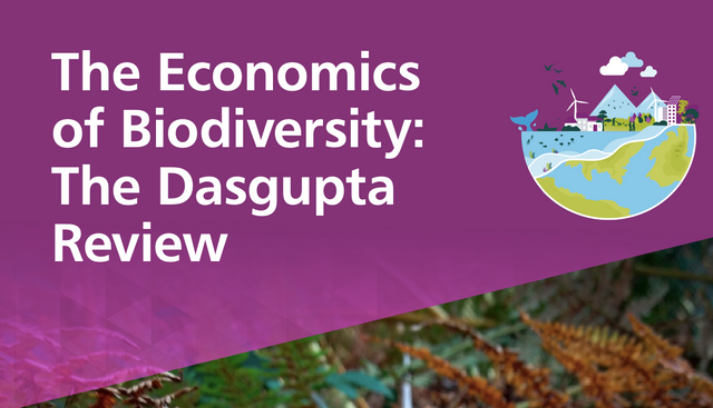Implementation of the recommendations of the DasGupta Report published today on the economics of biodiversity needs legal input too featured image