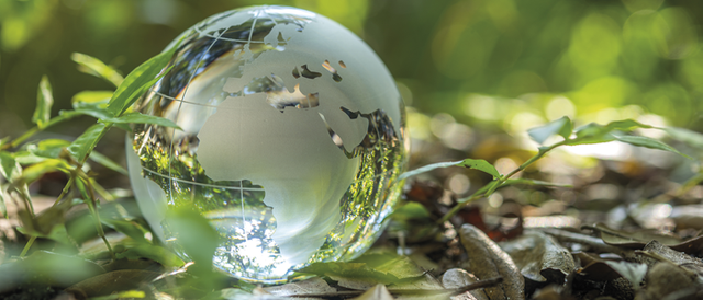Points to note from TPR's Climate Change Strategy | PensionLinks | Blogs | Insights | Linklaters featured image