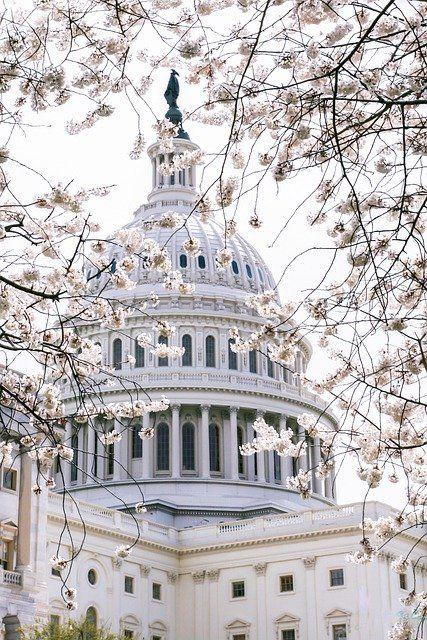 Biden budget buildup guarantees busy summer in Washington featured image