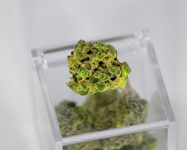 Will Medical Marijuana Be Part of the New WC Frontier? featured image