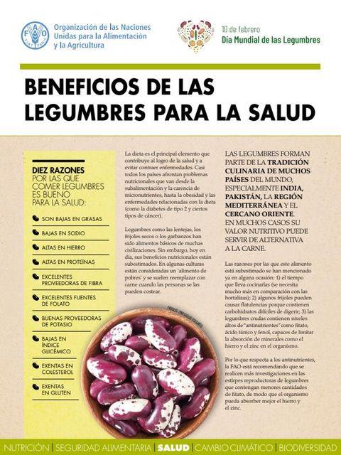 ¿Frijoles y sustentabilidad? featured image