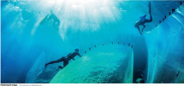 Lanzan iniciativa mundial para acabar con la basura marina y limpiar los océanos featured image