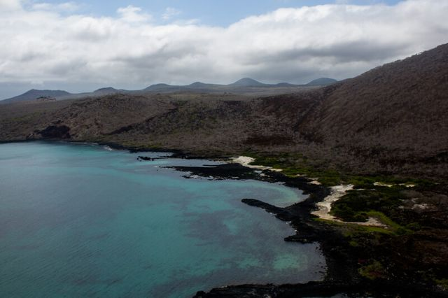 The Galápagos Restoration Project featured image