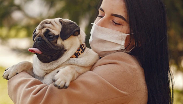 On pandemic pets as a 'furry annuity' for the next decade: What trend means for pet-care industry featured image