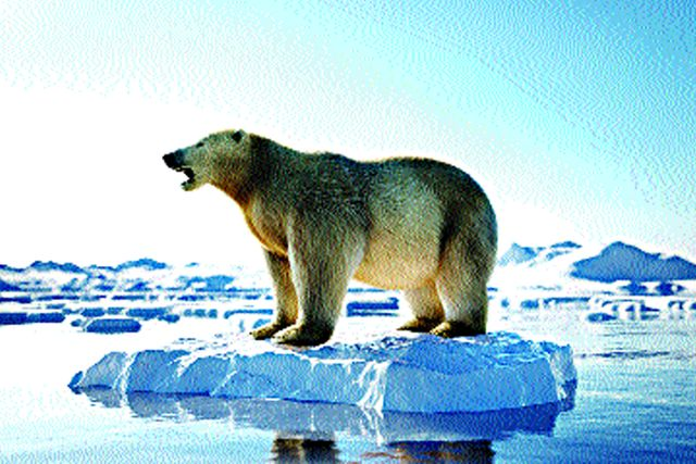 Arctic squabbles must end to ensure eco-balance featured image