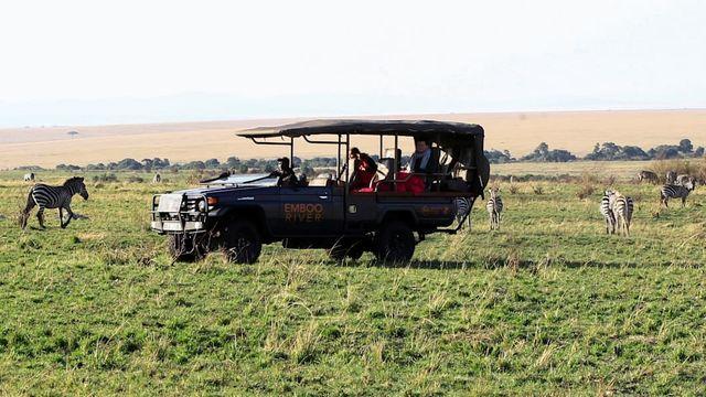 EV Safaris Promise Cleaner, Quieter Wildlife Tours featured image