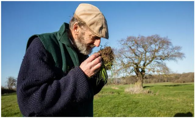 Regenerative farming shift could reduce UK climate emissions, say experts featured image