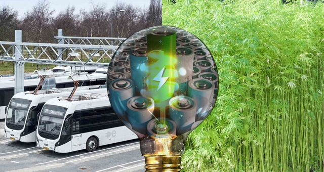 Hemp Supercapacitors and the Future of Carbon-Negative Energy Storage featured image