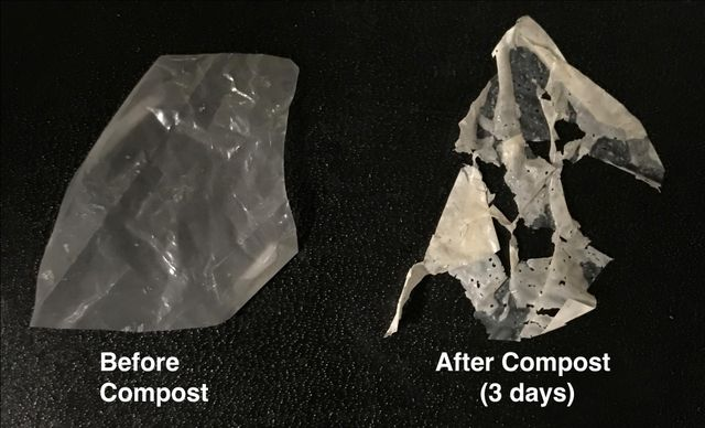 """Polymer-Eating Enzymes Make """"Biodegradable"""" Plastics Truly Compostable featured image"""