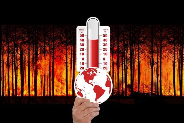 ¿Cuántas muertes por calor se deben al cambio climático? featured image