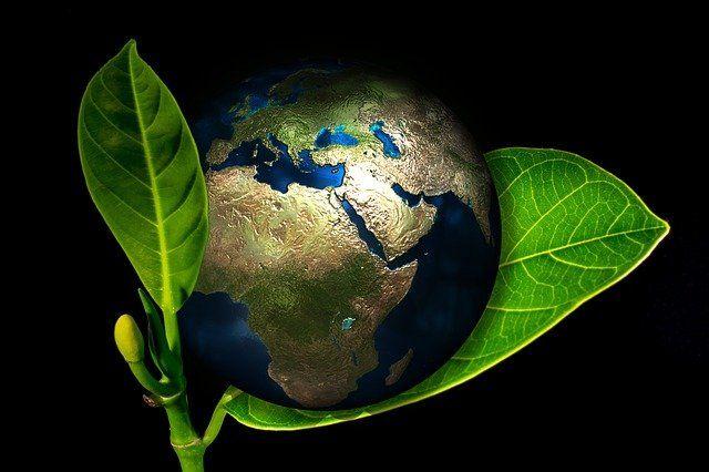 """Los 7 """"puntos de retorno"""" para salvar el planeta featured image"""