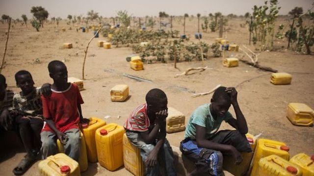 El impacto del cambio climático en la seguridad alimentaria featured image