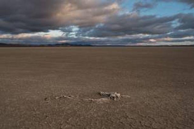 Día Mundial contra la Desertificación y la Sequía 2021, España está ya en riesgo de desertificación featured image
