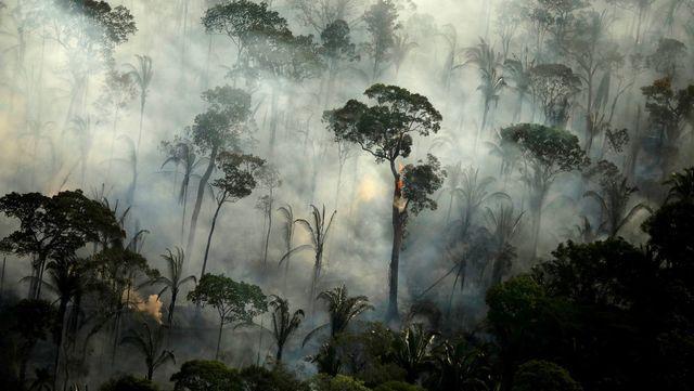 """""""Lo peor está por llegar"""": el informe más exhaustivo sobre el cambio climático advierte de consecuencias inminentes featured image"""
