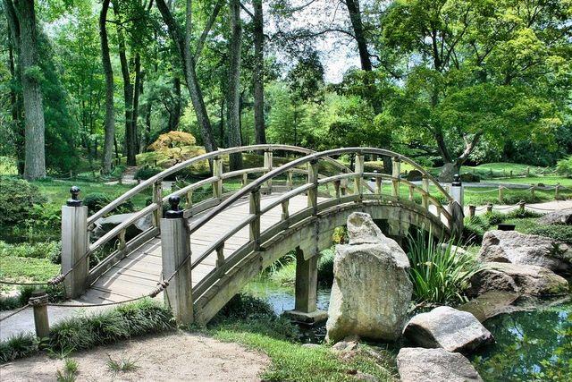 Microorganimos que viven en los suelos de parques urbanos featured image