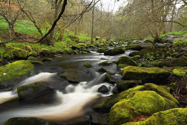 La contaminación silenciosa que daña la naturaleza featured image