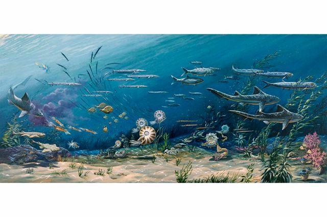 La acidez atmosférica afecta a la ecología oceánica, según una nueva investigación featured image