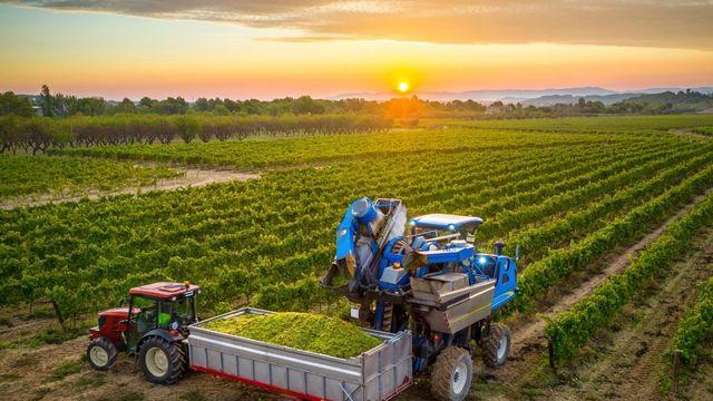 El reto de alimentar a toda la población mundial featured image