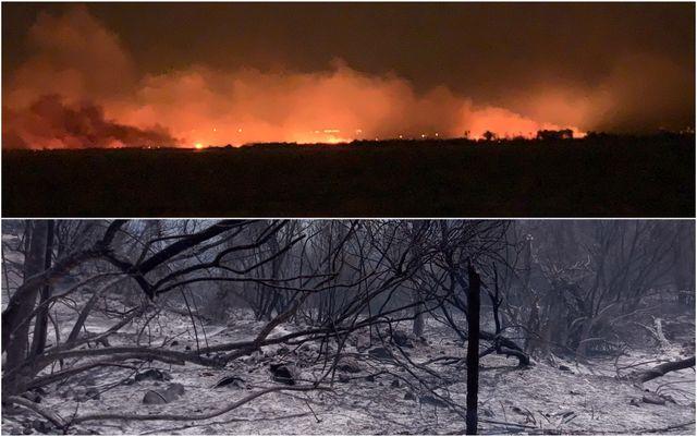 Incendi: Italia prima in Ue per numero di roghi e seconda per ettari bruciati quest'anno featured image