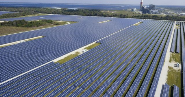 Harnessing the Sun's Energy in Florida featured image