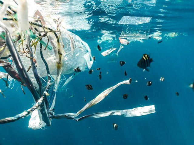 """Plastica in mare e negli oceani: ecco gli """"aspirapolvere"""" che la catturano e raccolgono featured image"""
